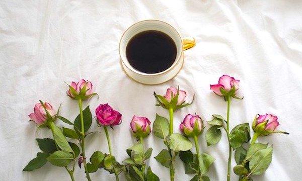 コーヒーギフト