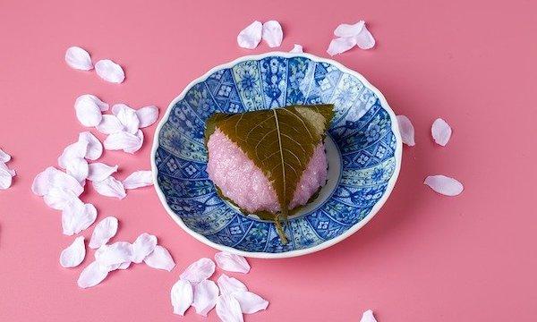 おしゃれな和菓子の贈り物11選